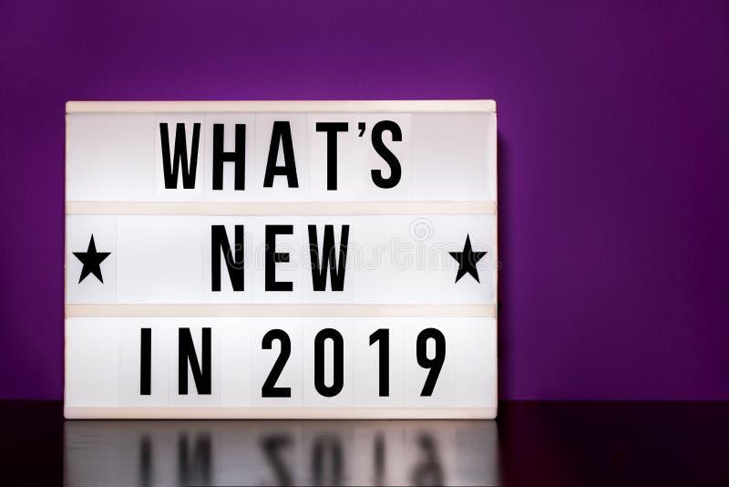 Что ново в 2019 знаке - литерность стиля кино на светлой коробке & пурпурной предпосылке стоковое изображение
