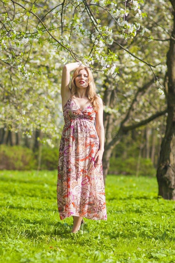 Чувственная и нежная кавказская белокурая женщина в лесе имея прогулку стоковое изображение
