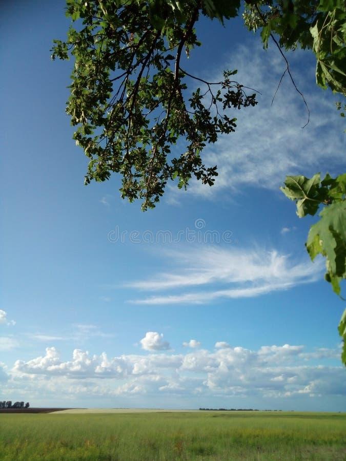 Чудесное небо стоковые изображения