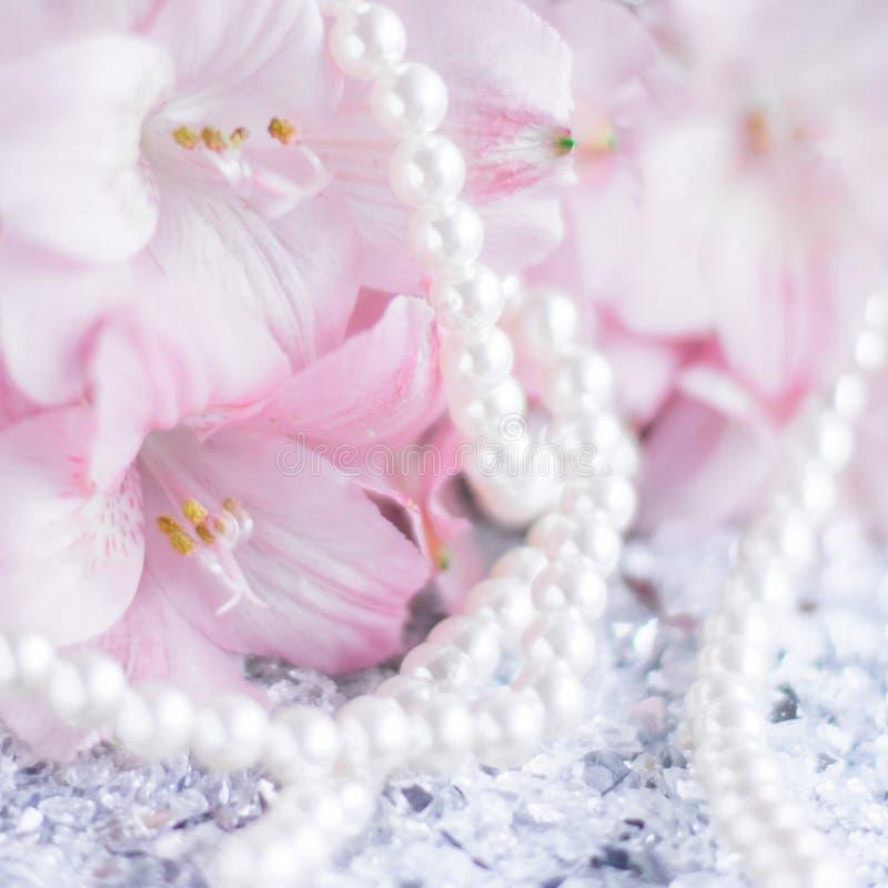 чудесные украшения жемчуга стоковое изображение rf