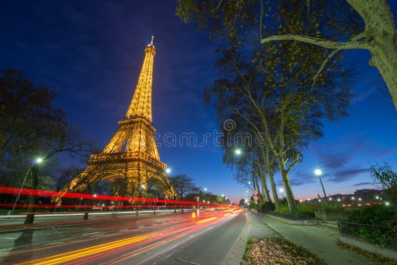 Чудесные цветы Эйфелеваа башни на ноче стоковая фотография rf