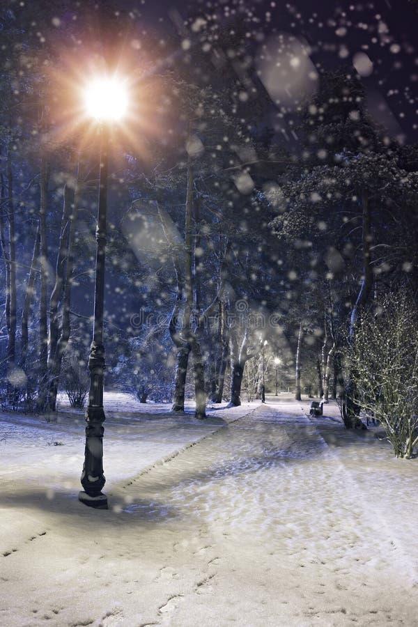 Чудесный вечер зимы стоковое фото