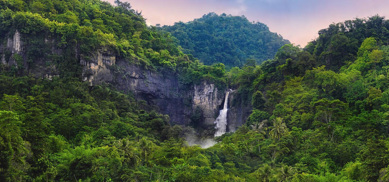 Чудесный ландшафт водопада каскада в тропическом тропическом лесе стоковая фотография rf