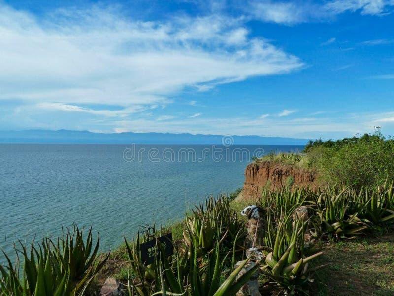 чудесный ландшафт на океане стоковые изображения rf