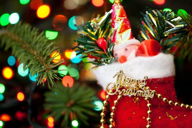 Чулок рождества стоковое фото