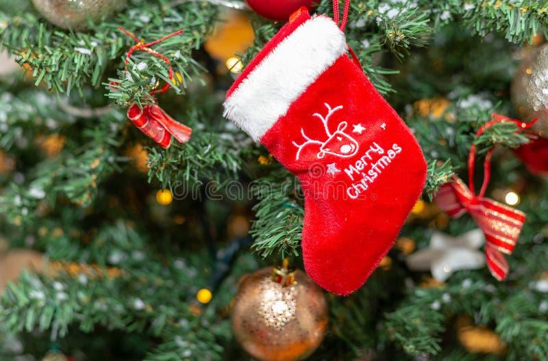 чулок украшение Дерево праздник Рождество стоковые изображения rf