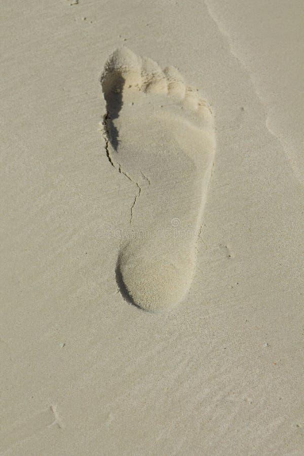 Чуть-чуть печать ноги человека на песке стоковые фото