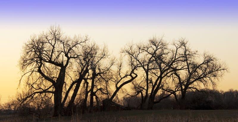 чуть-чуть валы восхода солнца силуэтов стоковое изображение