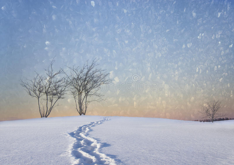 Чуть-чуть деревья в ландшафте зимы стоковые фотографии rf