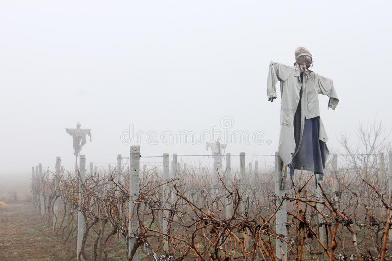 Чучела в тумане стоковое изображение
