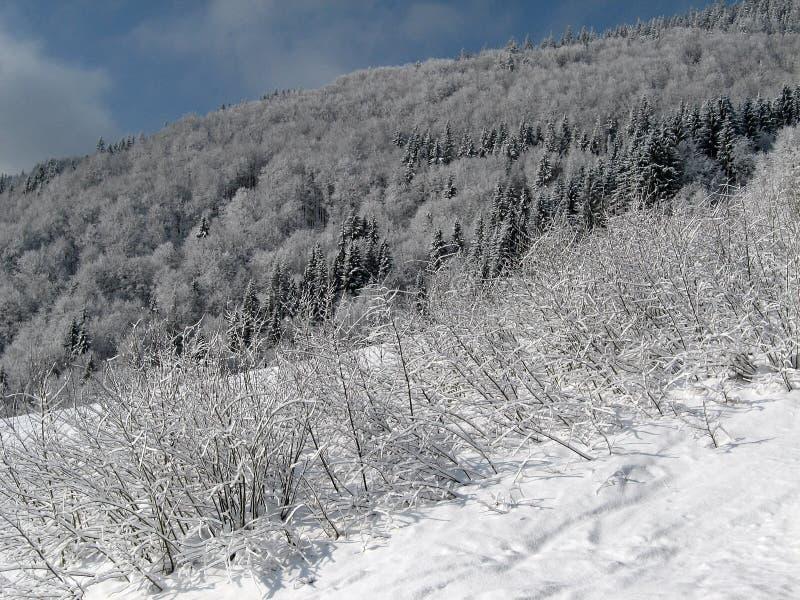 Чудесный ландшафт #3 горы стоковые фото