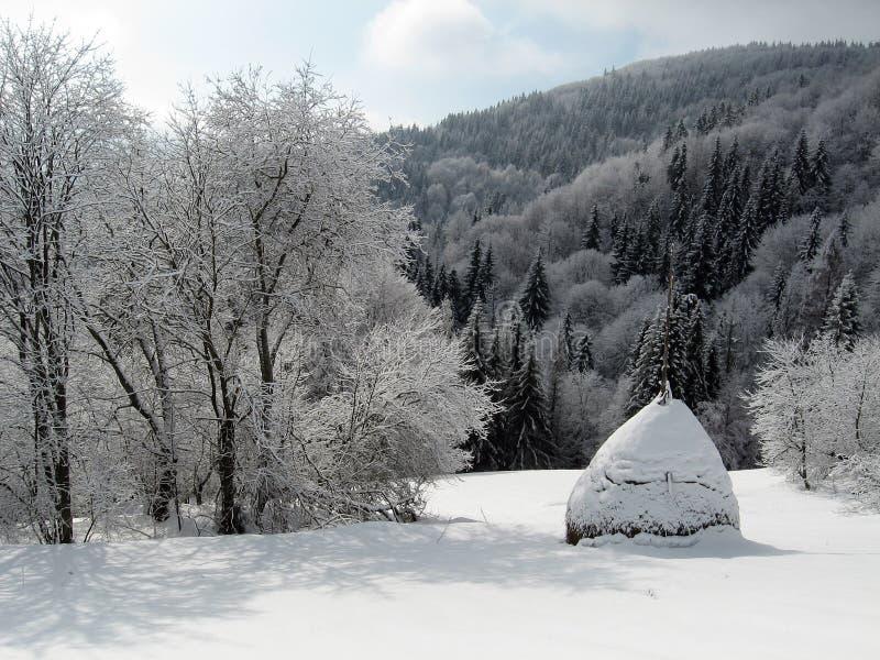Чудесный ландшафт #1 зимы стоковая фотография