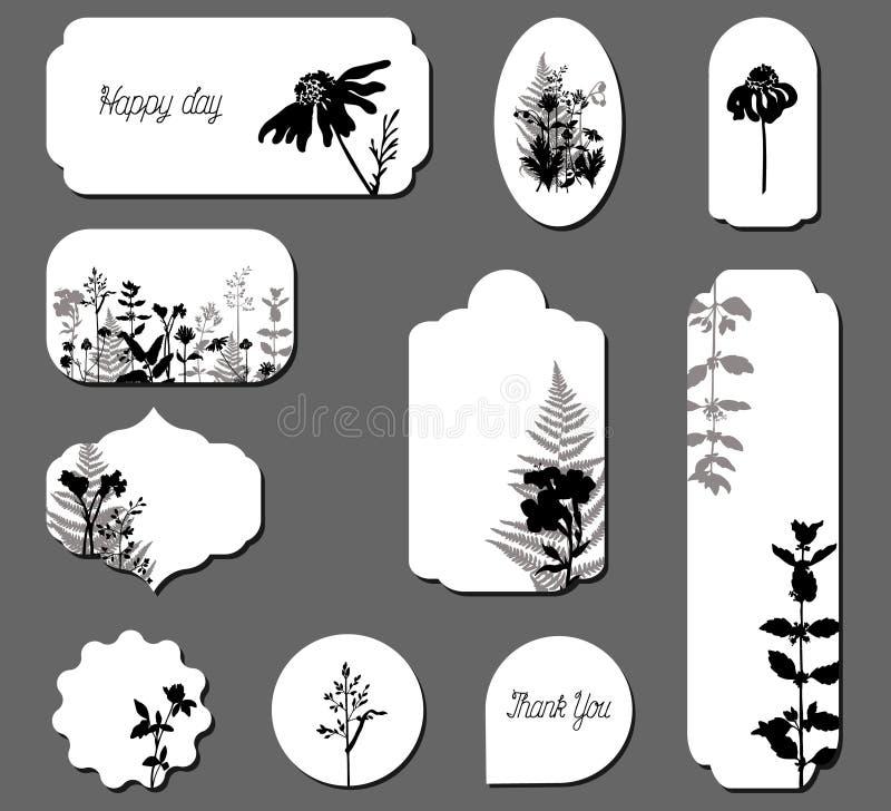 Шаблоны вектора различные с дикой травой стоковая фотография