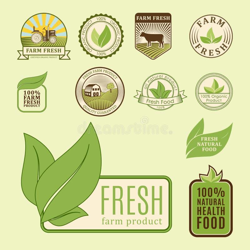 Шаблоны еды био eco фермы органического здоровые и цвет винтажного vegan зеленый для меню ресторана или вектора значка пакета иллюстрация вектора