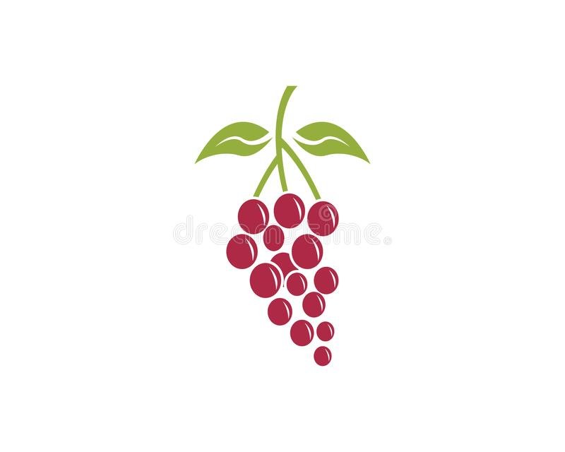 Шаблон вектора логотипа плодоовощ виноградины иллюстрация штока