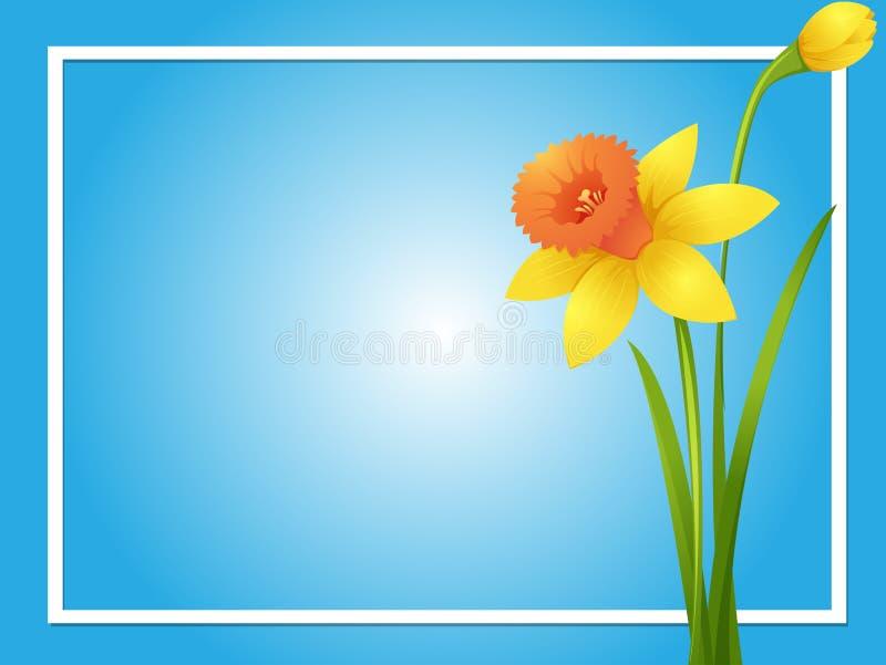 Шаблон границы с желтым daffodil бесплатная иллюстрация