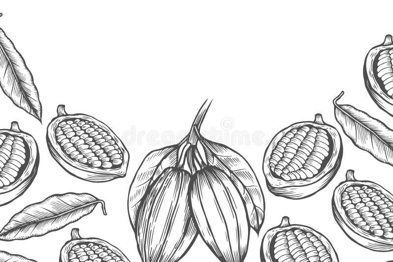Шаблон дизайна дерева фасоли какао иллюстрация вектора
