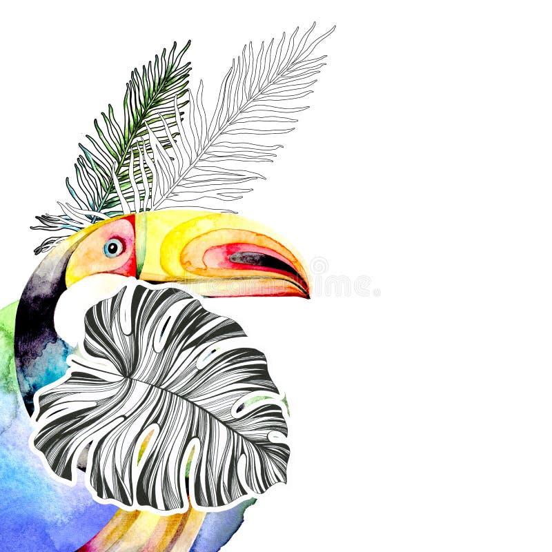 Шаблон для открытки, приглашения с изображением toucan птицы окруженной тропическими листьями на белой предпосылке Акварель иллюстрация вектора