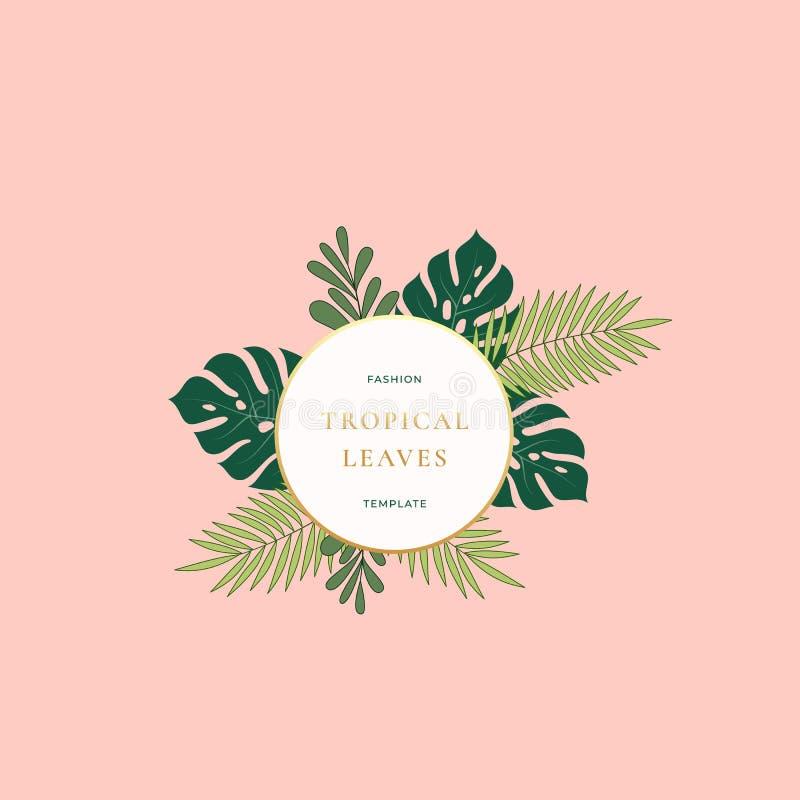 Шаблон знака, эмблемы, карточки или логотипа моды листьев ладони Monstera тропический Абстрактная зеленая листва с круглым знамен иллюстрация штока