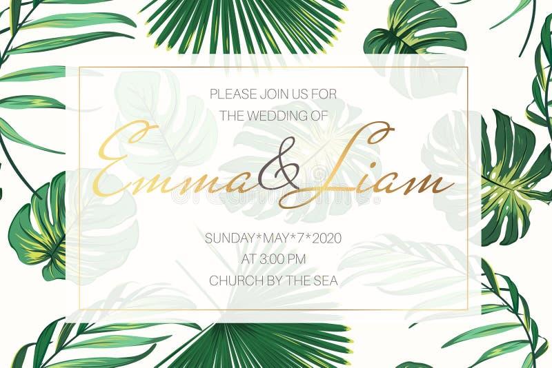 Шаблон карточки приглашения события свадьбы Monstera пальмы экзотических тропических джунглей яркое ое-зелен выходит рамка границ иллюстрация штока