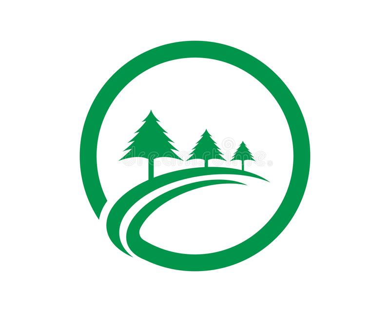 Шаблон логотипа дерева кедра иллюстрация штока