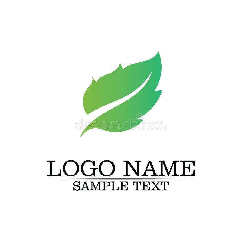 Шаблон логотипа лист дерева Eco иллюстрация штока