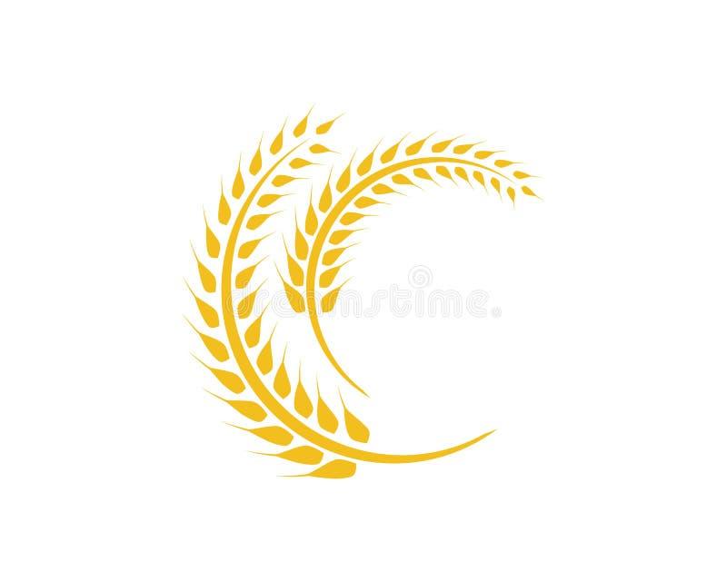 Шаблон логотипа пшеницы иллюстрация штока