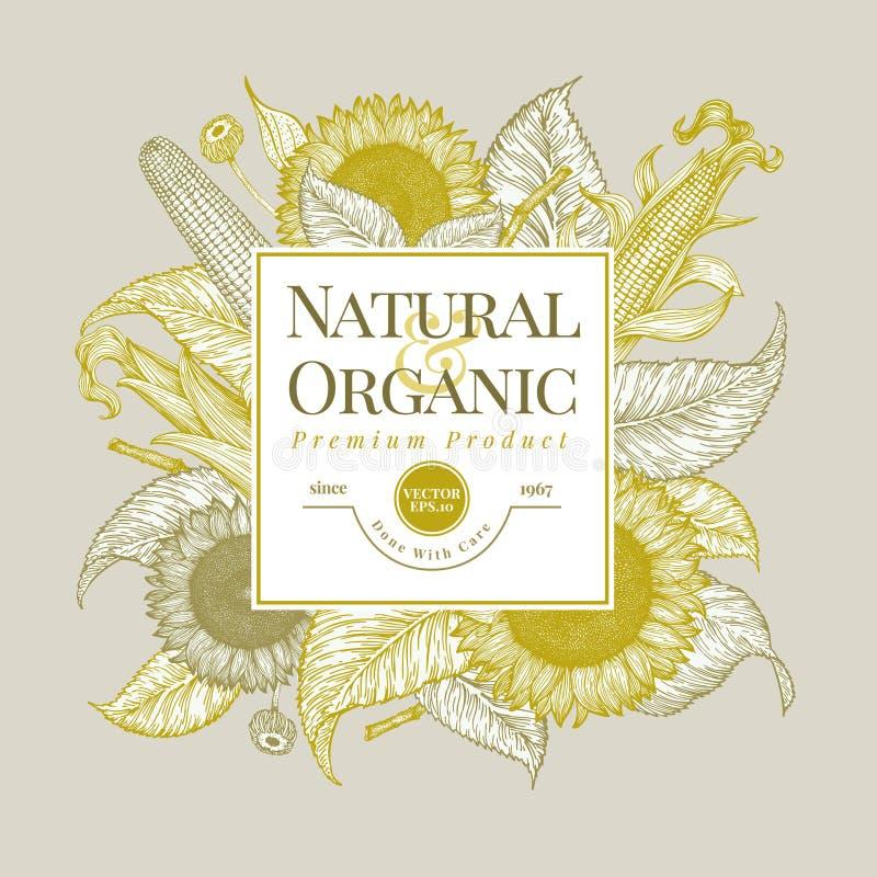 Шаблон логотипа солнцецвета и мозоли Дизайн знамени солнцецвета Иллюстрация вектора нарисованная рукой Может быть польза для орга бесплатная иллюстрация