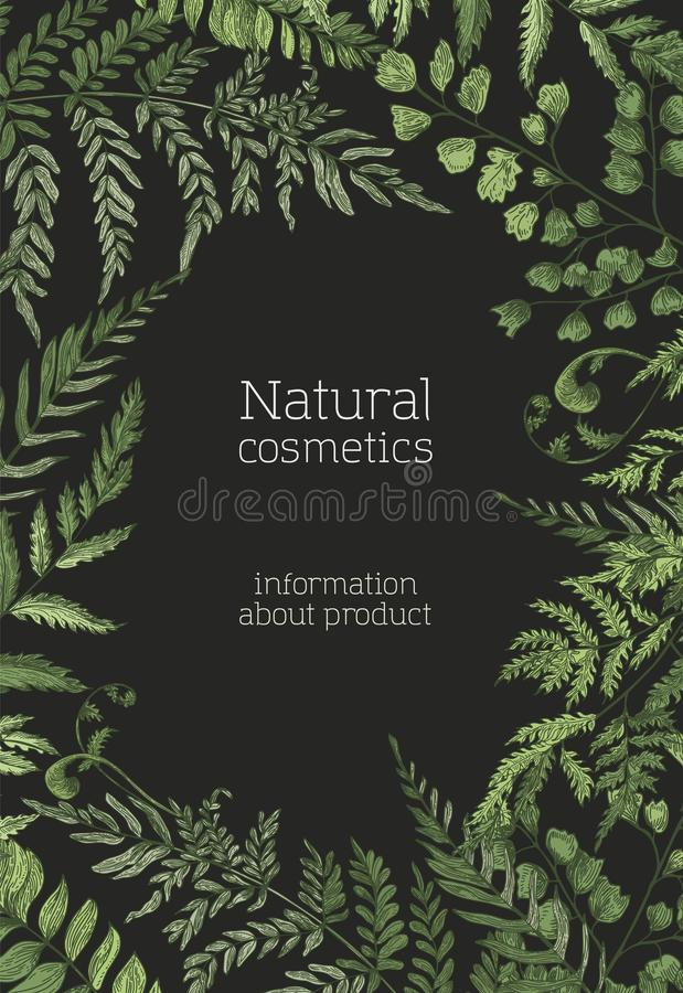 Шаблон рогульки или плаката с папоротниками, одичалыми травами, зеленые herbaceous заводы вручает вычерченное на черной предпосыл бесплатная иллюстрация