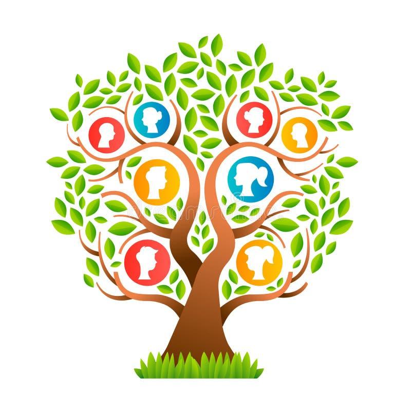 Шаблон фамильного дерев дерева с значками папы и ребенк мамы иллюстрация вектора