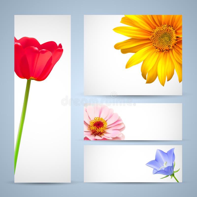 шаблон цветка конструкции брошюры иллюстрация вектора