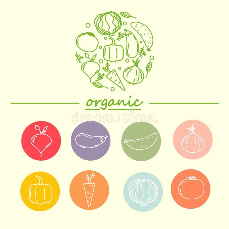 Шаблон дизайна логотипа вектора с vegetable значками в ультрамодном линейном стиле иллюстрация вектора