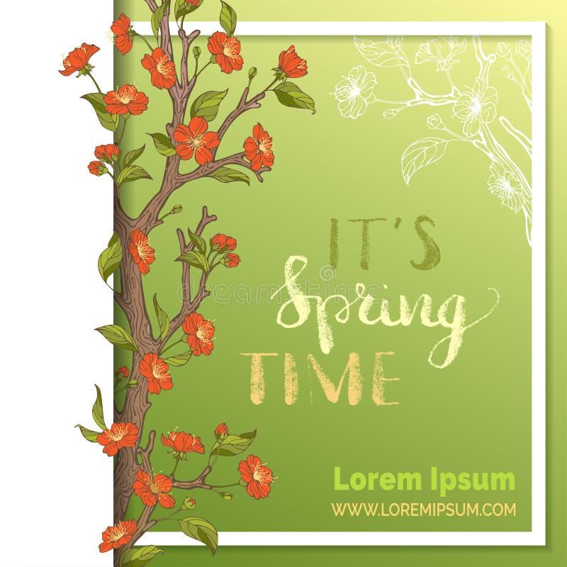 Шаблон карточки весны вектора бесплатная иллюстрация