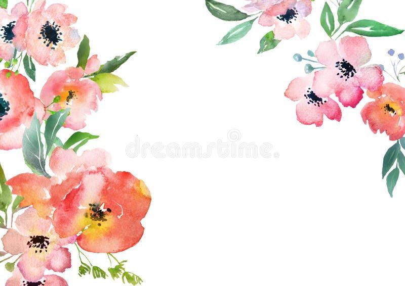 Шаблон карточки роз акварели иллюстрация вектора