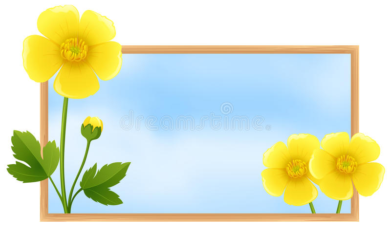 Шаблон рамки с желтыми цветками лютика иллюстрация вектора