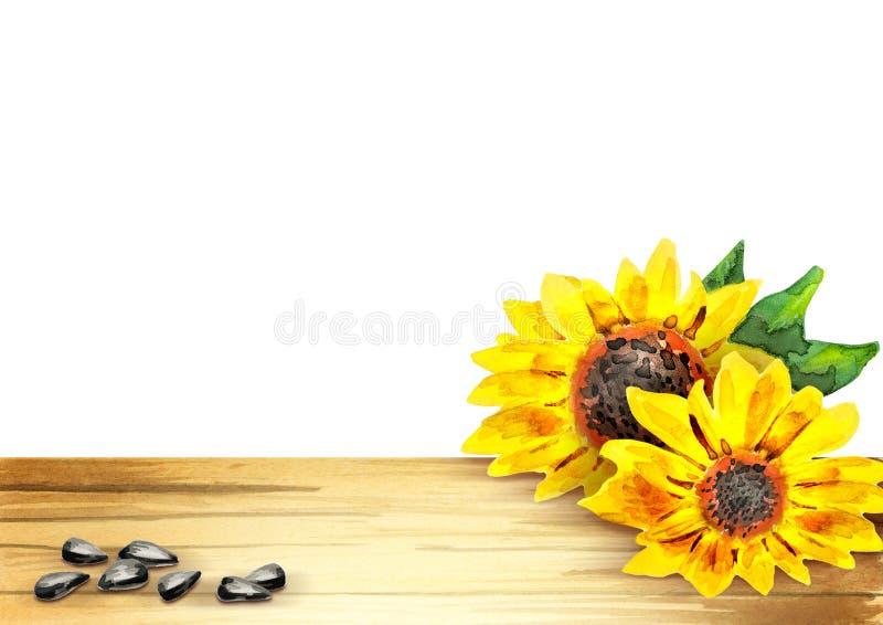 Шаблон солнцецвета для вашего продукта иллюстрация вектора