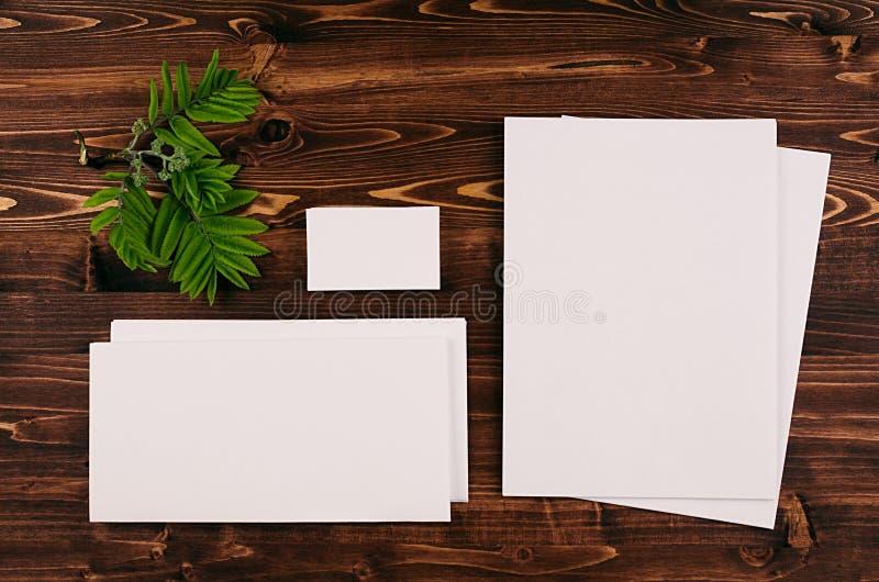 Шаблон фирменного стиля, канцелярские принадлежности с зеленой листвой на винтажной коричневой деревянной доске Насмешка вверх дл стоковое фото