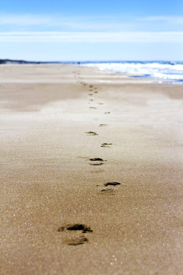 Шаги в песке стоковая фотография