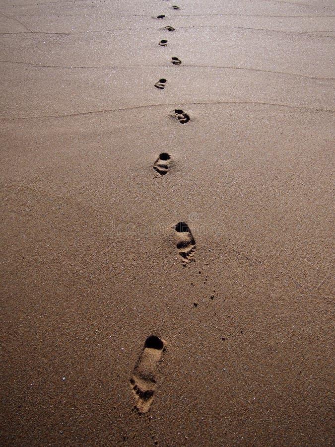 Шаги в песке стоковые фото