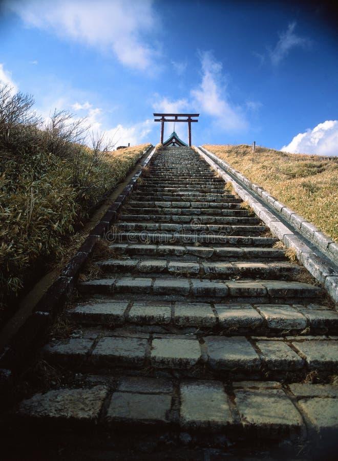 Шаги к святыне Hakone Motomiya стоковая фотография