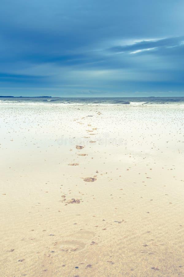 Шаги на пляже с небом overcast стоковая фотография rf