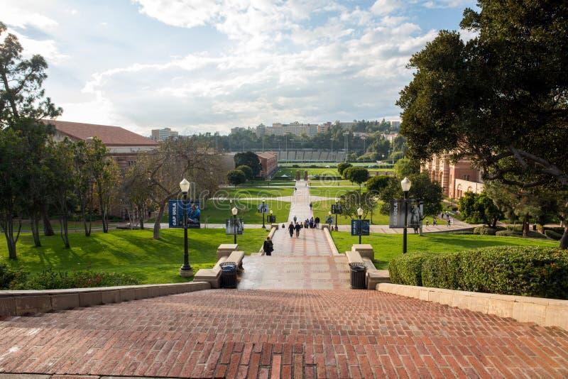 Шаги Janss на кампус UCLA стоковое изображение rf