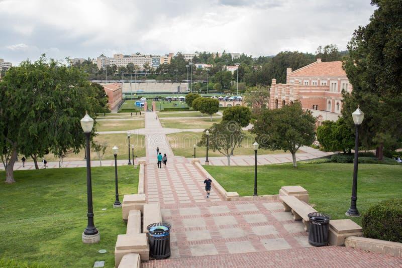 Шаги Janss на UCLA стоковое фото rf
