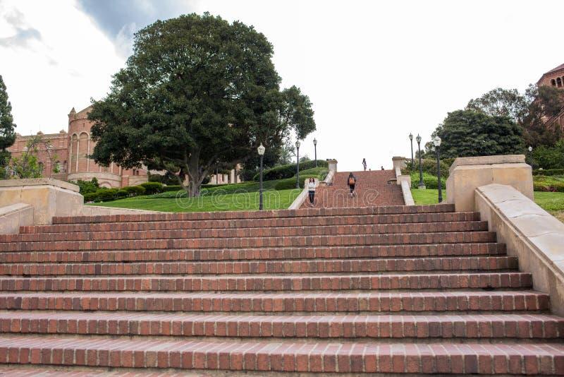Шаги Janss на UCLA стоковое изображение rf