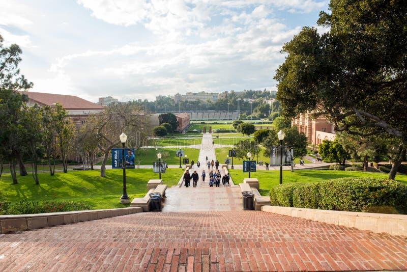Шаги Janss на UCLA стоковые фото