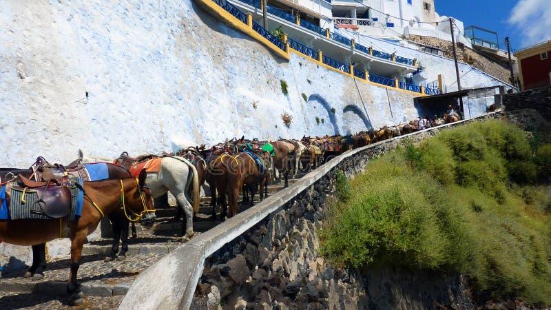 Шаги Santorini стоковые изображения