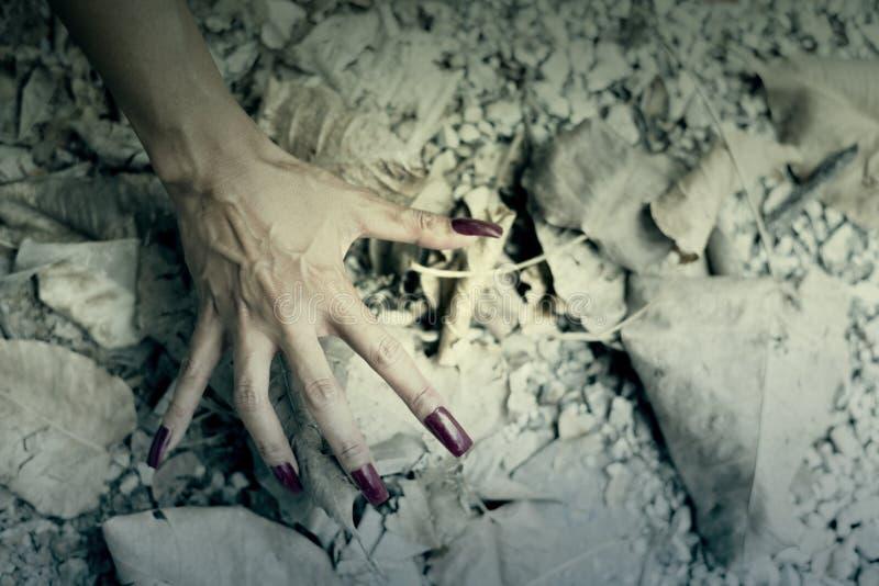Шаг руки женщины на пол с сухими лист стоковые фотографии rf