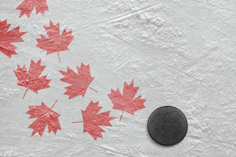 Шайба и кленовые листы хоккея стоковое фото