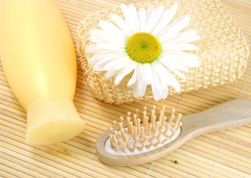 шампунь hairbrush стоковые фотографии rf