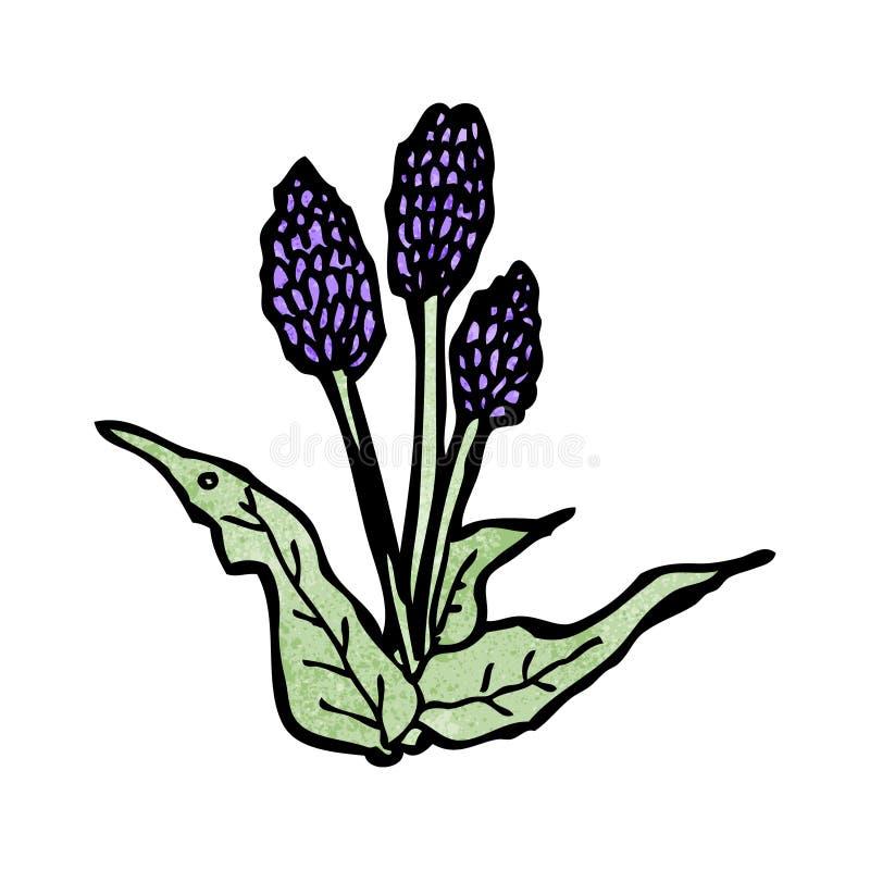 шарж полевых цветков иллюстрация вектора